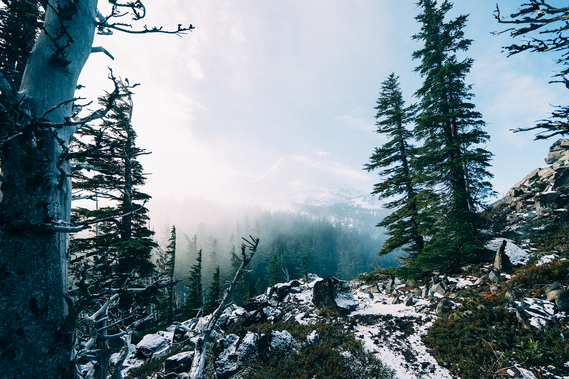 Finding Freedom in the Wilderness – Set Apart